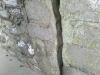 IMAG0290